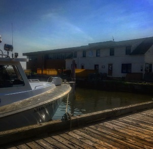 CBF Oyster Restoration Center - MD