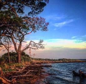 Cemetery Beach - MD